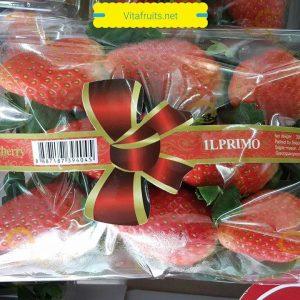 dau-tay-han-quoc-vitafruits-hop-1.32kg-09