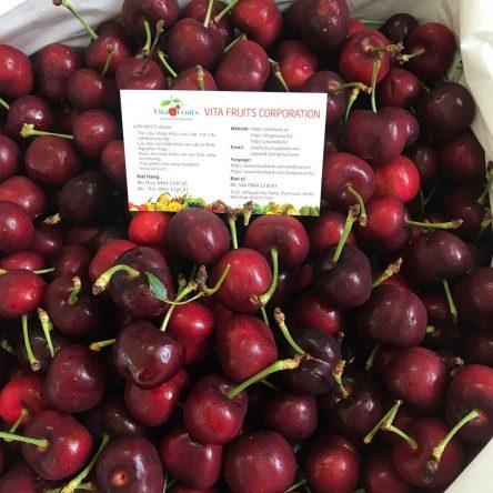 Combo 1Kg Cherry Mỹ 8.5 + 1Kg Rau Bò Khai