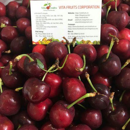 Cherry Mỹ Size 9.0
