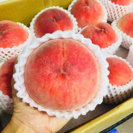 Đào Nhật Hikawa Thùng 5.5 Kg