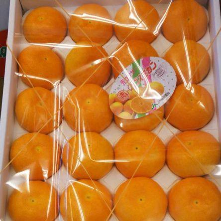 Quýt Mandarin Nagasaki Hộp 2.5Kg